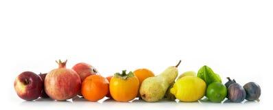 owoc ustawiać Obrazy Stock