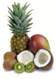 owoc ustawiają tropikalnego obrazy royalty free