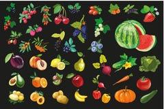 Owoc warzywa i berriesOrganic karmowa ikona wektoru ilustracja Fotografia Stock
