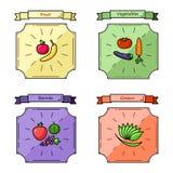 Owoc, warzywa, jagody, zieleń koloru wektoru ilustracja Obraz Royalty Free
