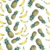owoce bezszwowy wzoru Zdjęcie Stock