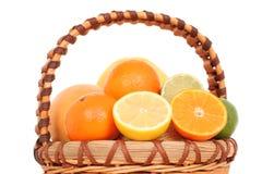 owoce cytrusowe zdjęcia stock