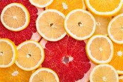 owoce cytrusowe cytryn lime pomarańcze Zdjęcie Stock