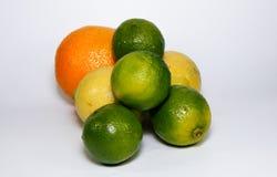 owoce cytrusowe cytryn lime pomarańcze Obrazy Stock