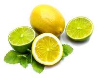 owoce cytrusowe w izolacji white Obraz Royalty Free