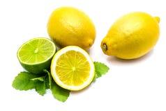owoce cytrusowe w izolacji white Zdjęcia Royalty Free