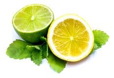 owoce cytrusowe w izolacji white Fotografia Royalty Free