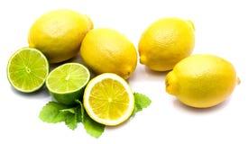 owoce cytrusowe w izolacji white Zdjęcie Stock