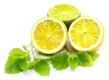 owoce cytrusowe w izolacji white Obraz Stock