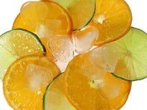 owoce lodu Obraz Stock