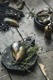 Owoce morza Świeże ostrygi, mussels na drewnianych deskach fotografia royalty free