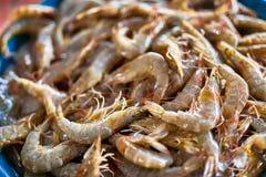 Owoce morza Świeże Złapane garnele Przy rolnika rynkiem (krewetki) uzdrowiciel zdjęcia royalty free