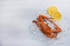 Owoce morza krab gotujący się gotujący lód na białego drewnianego tła Błękitnym Pływackim krabie i cytryna zdjęcie royalty free
