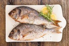 Owoce morza, luksusowy śródziemnomorski styl Zdjęcie Stock