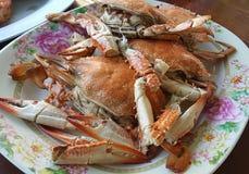 Owoce morza mieszanki półmiska zakończenie up, owoce morza bufet, owoce morza je restaurację Obraz Royalty Free
