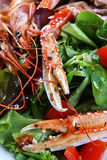 Owoce morza mieszany grill Fotografia Stock