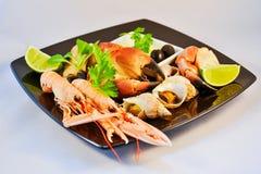 owoce morza mieszanych Fotografia Stock