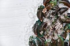Owoce morza Mussel na lodowego tła mussels oceanu Świeżym surowym zielonym smakoszu na lodzie i białym drewnianym odgórnym widoku obraz stock