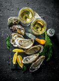 Owoce morza Ostrygi z białym winem, pikantność i pokrojoną cytryną, obrazy stock