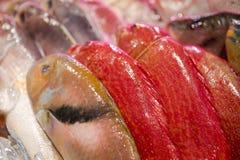 Owoce morza restauracje, świeży owoce morza, różnorodność rybi shellfish, Tajwański ` s owoce morza sklep, Fotografia Stock