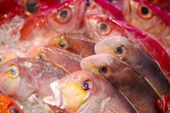 Owoce morza restauracje, świeży owoce morza, różnorodność rybi shellfish, Tajwański ` s owoce morza sklep, Obrazy Stock
