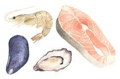 Owoce morza Set akwareli ostryga, mussel, łosoś ilustracji
