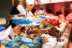 Owoce morza stojak w Hiszpania zdjęcia royalty free