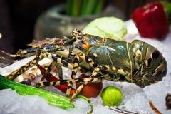 owoce morza tajlandzki Zdjęcia Stock