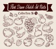 owoce Ręka rysująca nakreślenie ustalona wektorowa ilustracja ilustracji