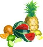 owoce tropikalne ilustracja wektor