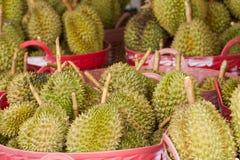 owoce tropikalne Obraz Royalty Free