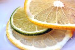 owoce wody Zdjęcie Stock