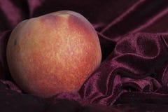 owocowa brzoskwinia Obraz Stock