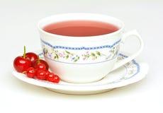Owocowa herbata z kwaśnymi wiśniami i czerwonym rodzynkiem Zdjęcia Stock