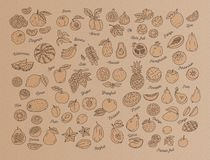 Owocowa ikona, Pociągany ręcznie set owoc na Kraft papierze, karton Menu projekta szablon również zwrócić corel ilustracji wektor royalty ilustracja