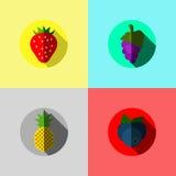 Owocowa ikona również zwrócić corel ilustracji wektora Zdjęcia Stock
