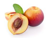 owocowa nektaryna Obraz Stock
