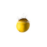 Owocowa pluśnięcie cytryna Zdjęcia Stock