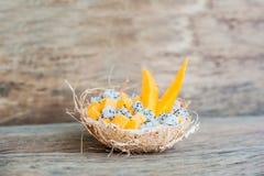 Owocowa sałatka z smoka melonowem w połówce koksu i owoc Obraz Royalty Free