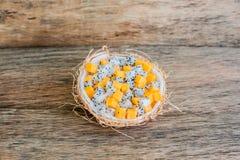 Owocowa sałatka z smoka melonowem w połówce koksu i owoc Zdjęcie Stock