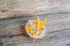 Owocowa sałatka z smoka melonowem w połówce koksu i owoc Zdjęcie Royalty Free