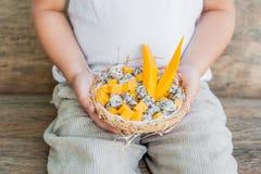 Owocowa sałatka z smoka melonowem w połówce koksu w ręce i owoc Zdjęcie Stock
