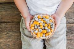 Owocowa sałatka z smoka melonowem w połówce koksu w ręce i owoc Obrazy Royalty Free