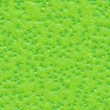 owocowa wapna łupy tekstura ilustracja wektor