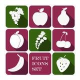 owocowe glansowane ikony ustawiają royalty ilustracja