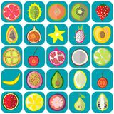 Owocowe ikony płaskie Zdjęcia Stock