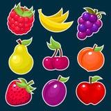 owocowe kolorowe owocowe ikony ilustracja wektor