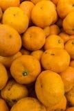 Owocowe pomarańcze Obrazy Stock