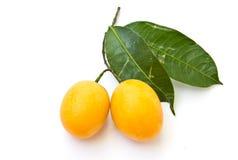 owocowego maprang owocowy śliwkowy tajlandzki Obraz Royalty Free