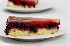 Owocowej galarety tort z lasowymi owoc Fotografia Royalty Free